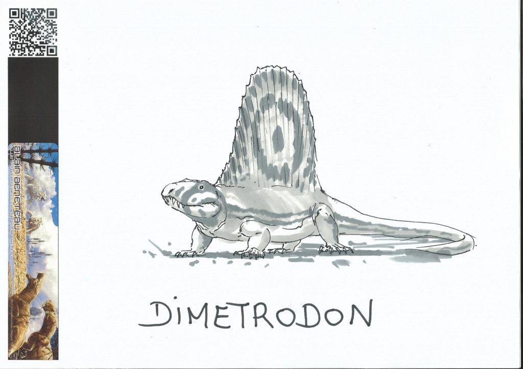 Dimetrodon selon Alain Bénéteau