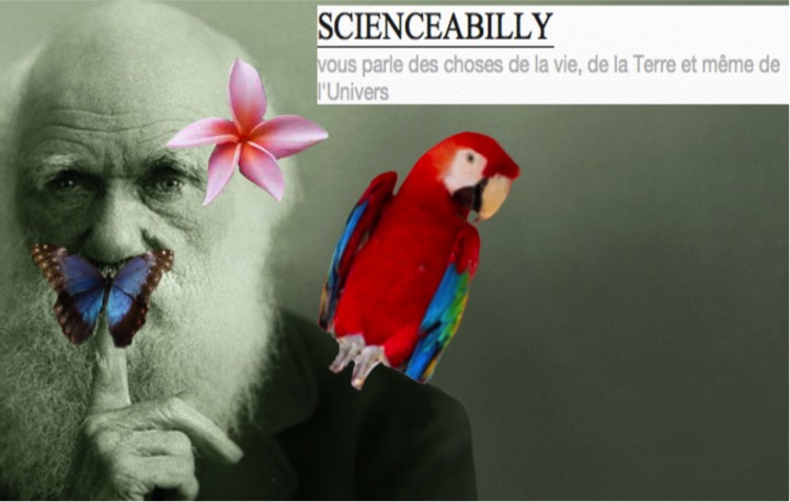 Scienceabilly