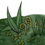 Une Touche de Vert