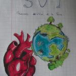 Présentation SVT